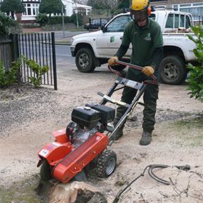 stump-grinding1